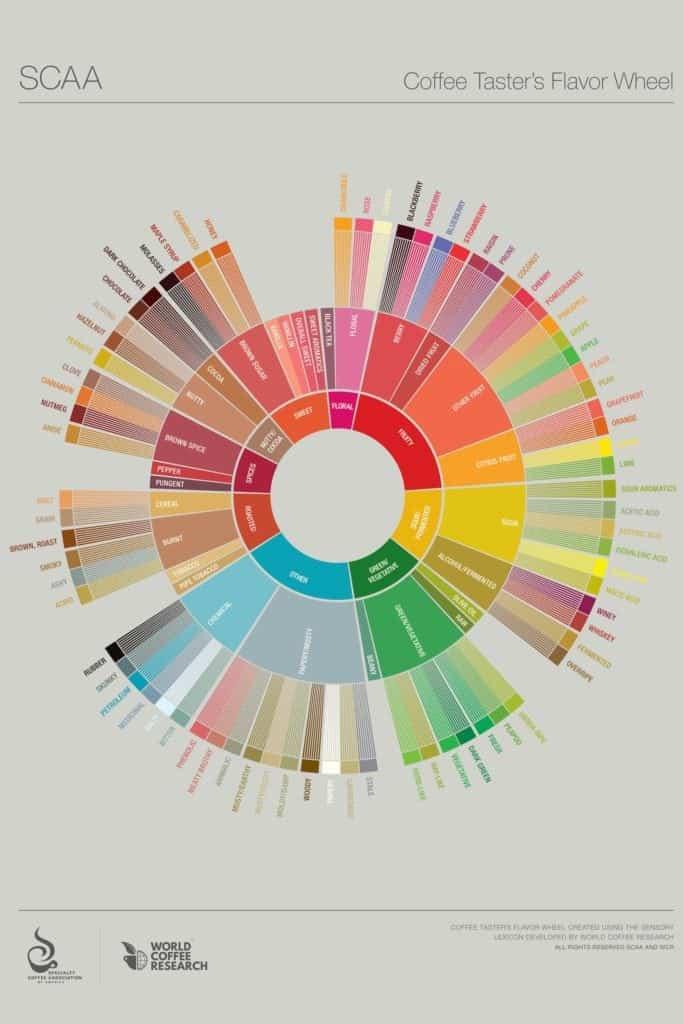 flavor wheel - better cupping sheet
