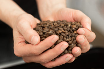 Barista's Guide To Coffee Freshness